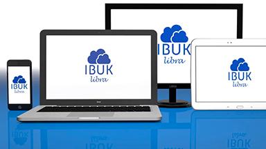 Tutorial IBUK Libra dla PWN – BeeProduction